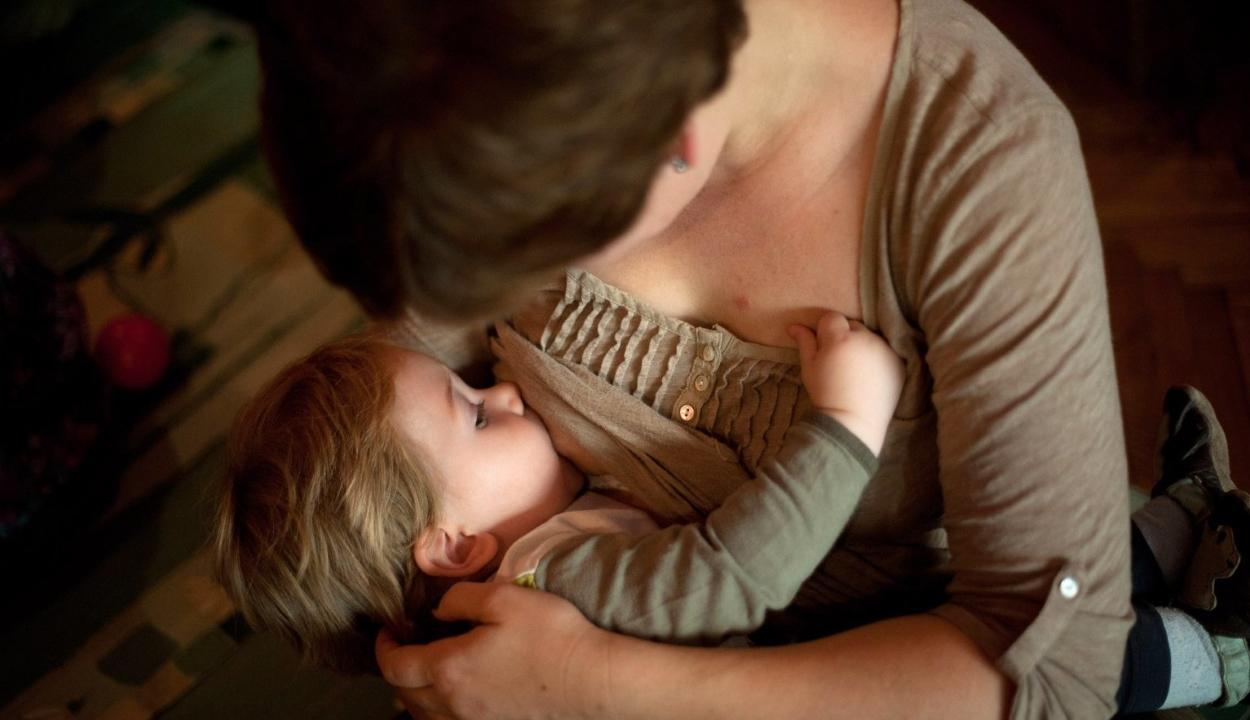 Felnőtt korban is egészségesebb az, akit anyatejjel tápláltak