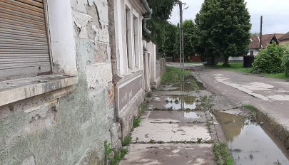 Petőfi (utca): a víz az úr