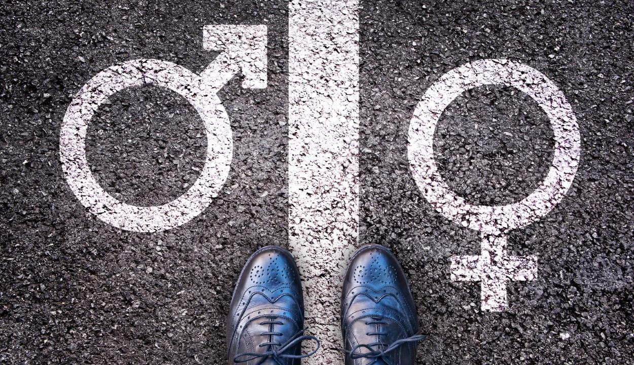 Megtámadta az államfő az alkotmánybíróságon a genderelmélet tanítását tiltó törvénymódosítást