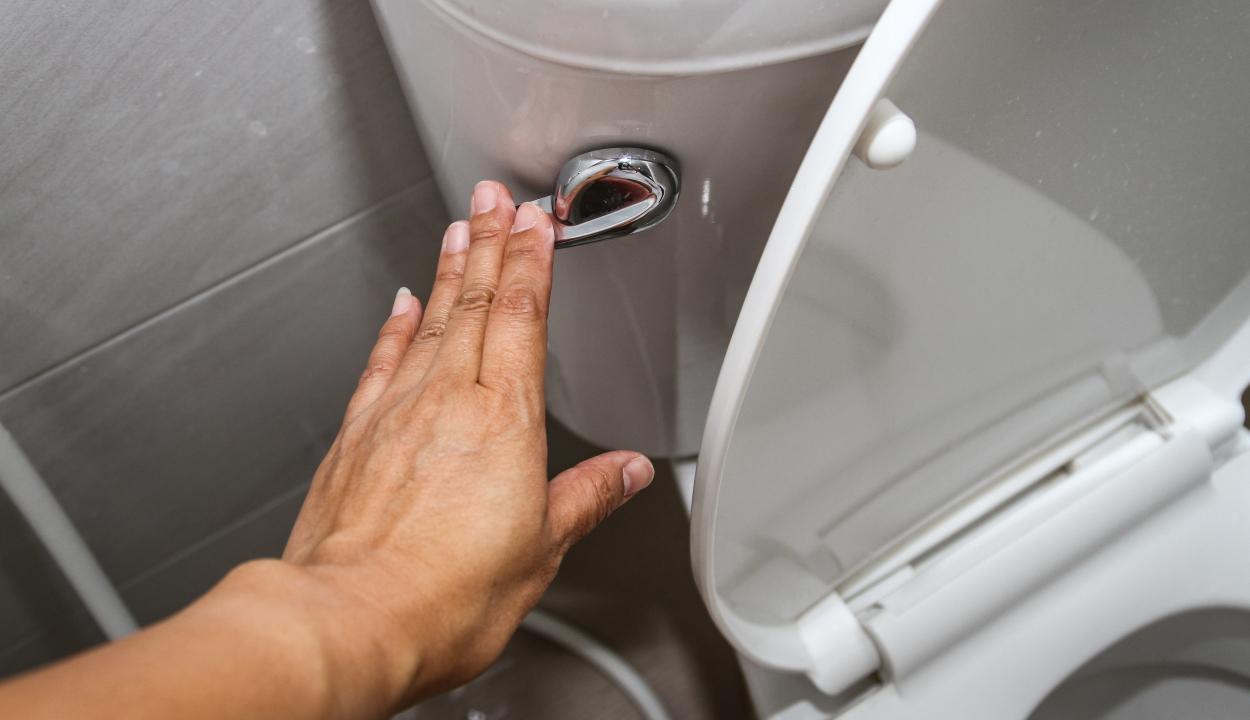 """Fertőzésveszélyes """"permetfelhő"""" szabadul fel a nyitott fedelű vécé leöblítésekor"""