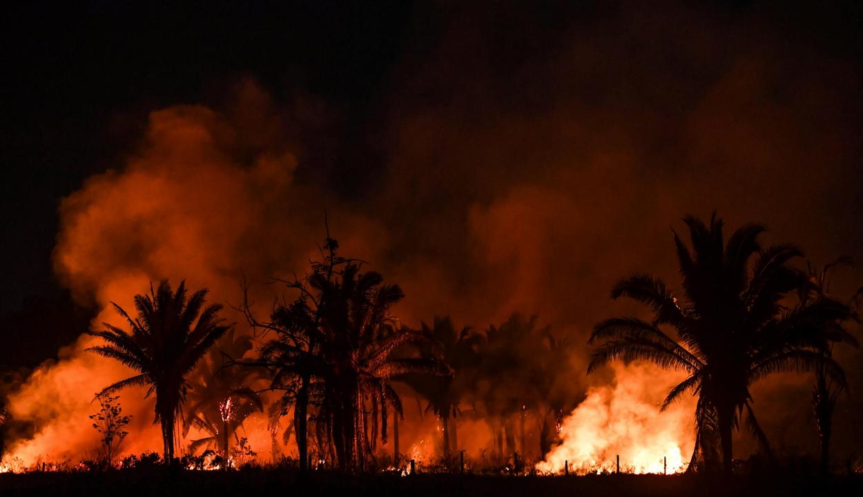 Újra lángolnak az esőerdők Brazíliában