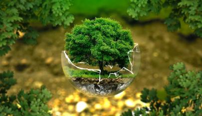 Környezettudatos műanyag használat a Műanyagmentes Július fényében