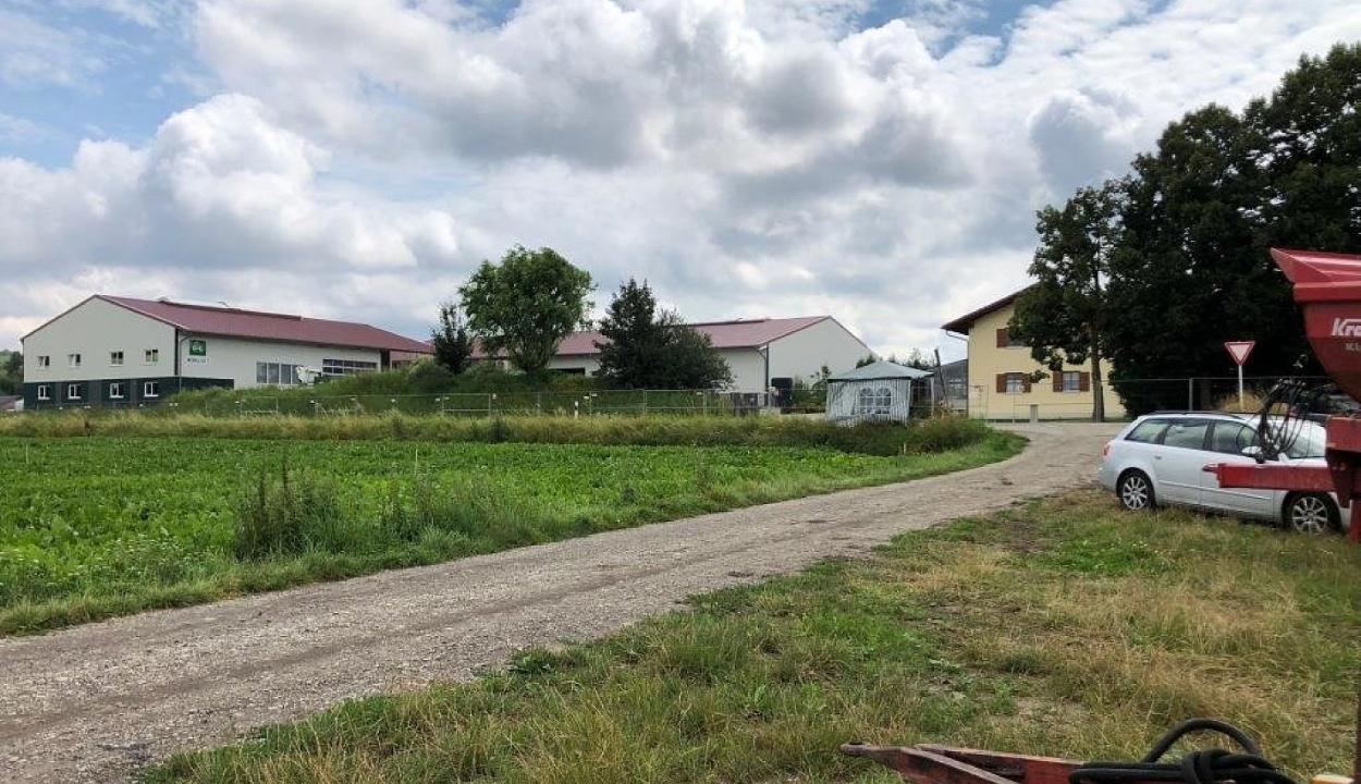 150 romániai munkás fertőződött meg koronavírussal egy németországi farmon