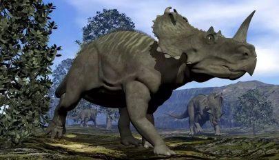 Már a dinoszauruszok is szenvedhettek rákban
