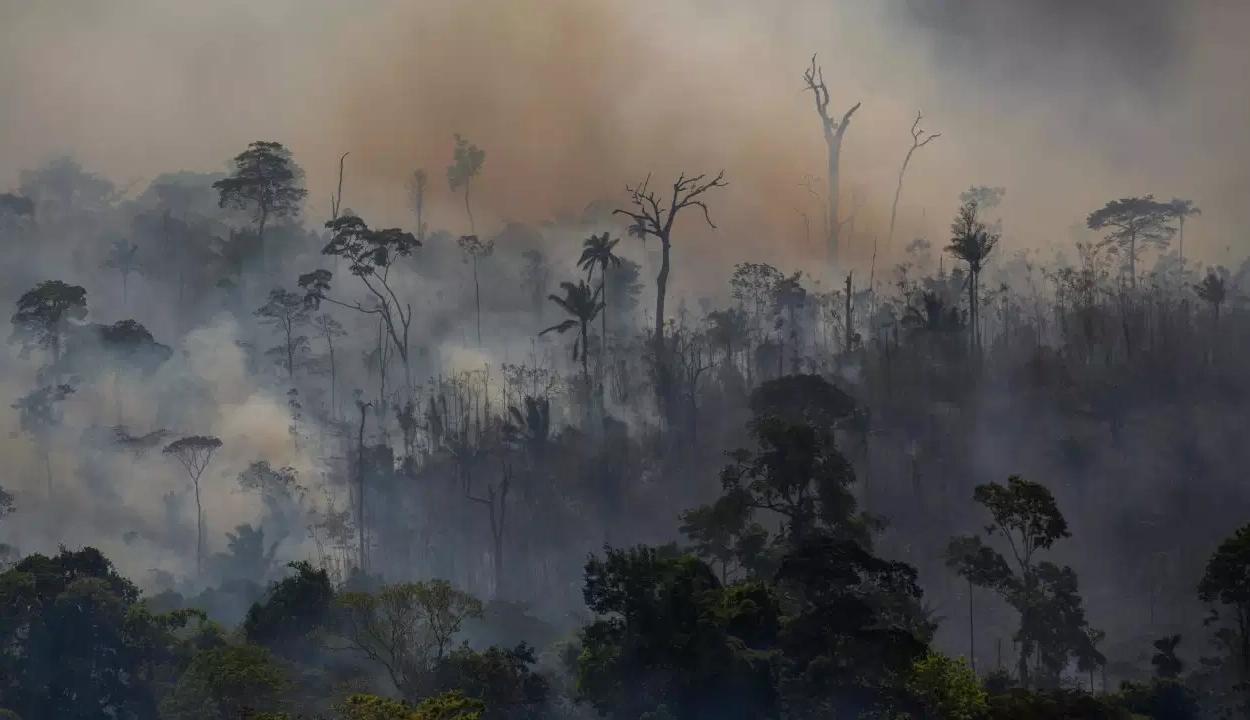 Ismét hatalmas tüzek pusztítanak Amazóniában