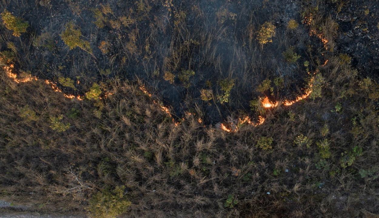 Környezeti vészhelyzetet rendeltek el Brazíliában az erdőtüzek miatt