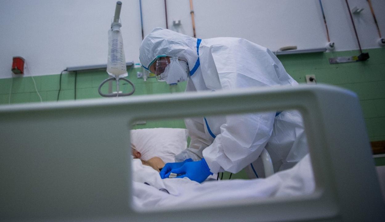 8134 új koronavírusos megbetegedést jelentettek 33.021 teszt feldolgozása nyomán
