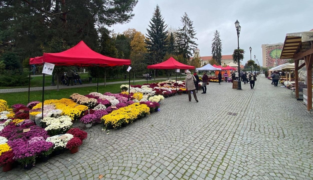 Virágvásár Sepsiszentgyörgy főterén