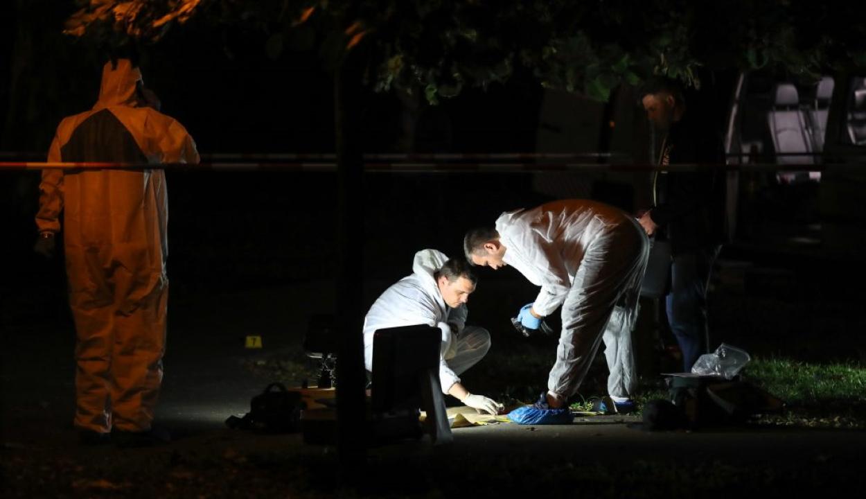 Összeégett női holttestet találtak Giurgiu megyében az országút szélén