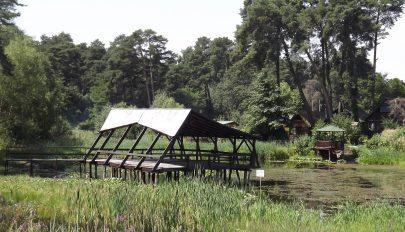 Erdély kevésbé ismert kuriózumai (12.) A Szent Anna-tó és a Mohos (II.)