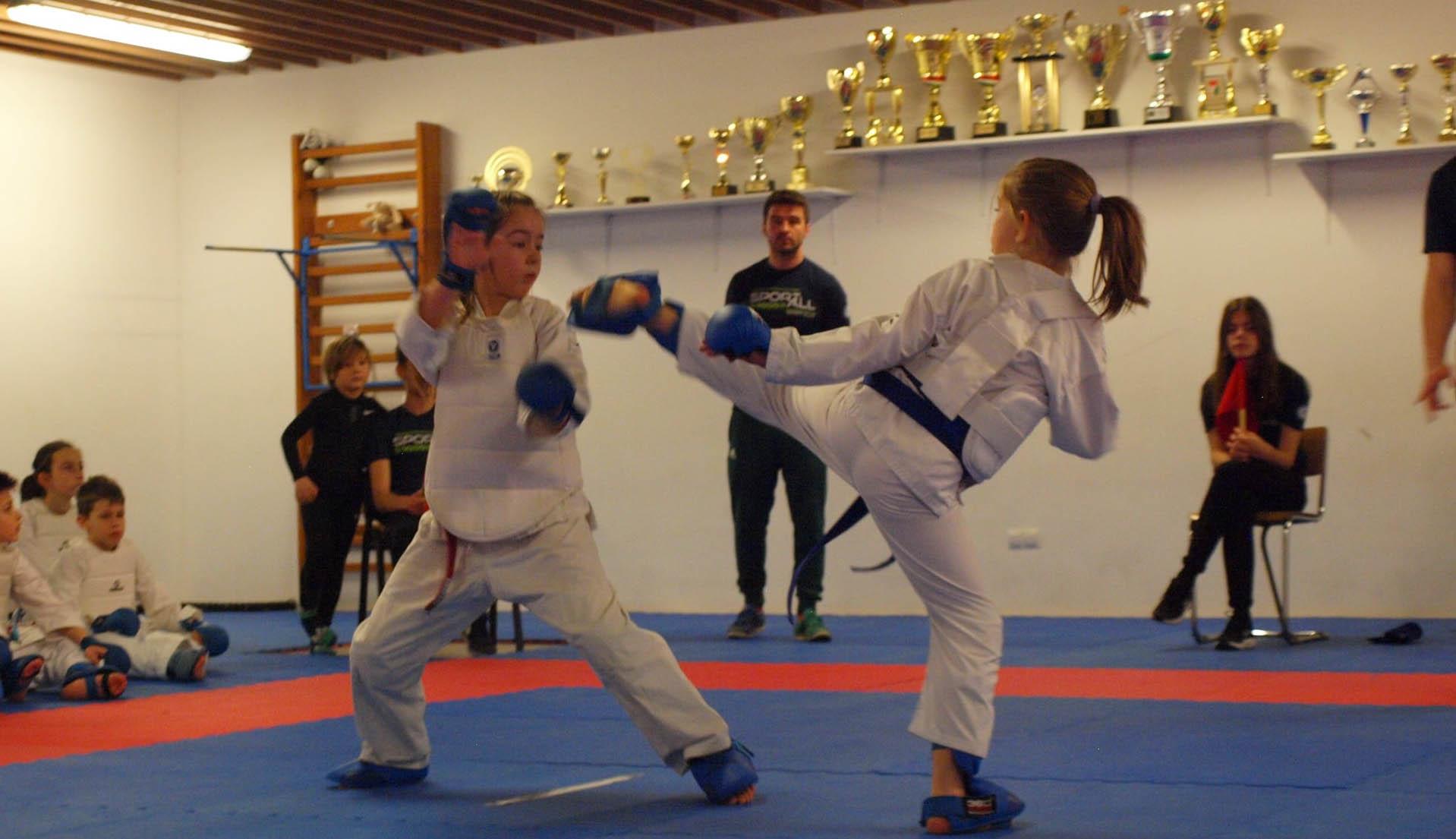 Házi karate-liga