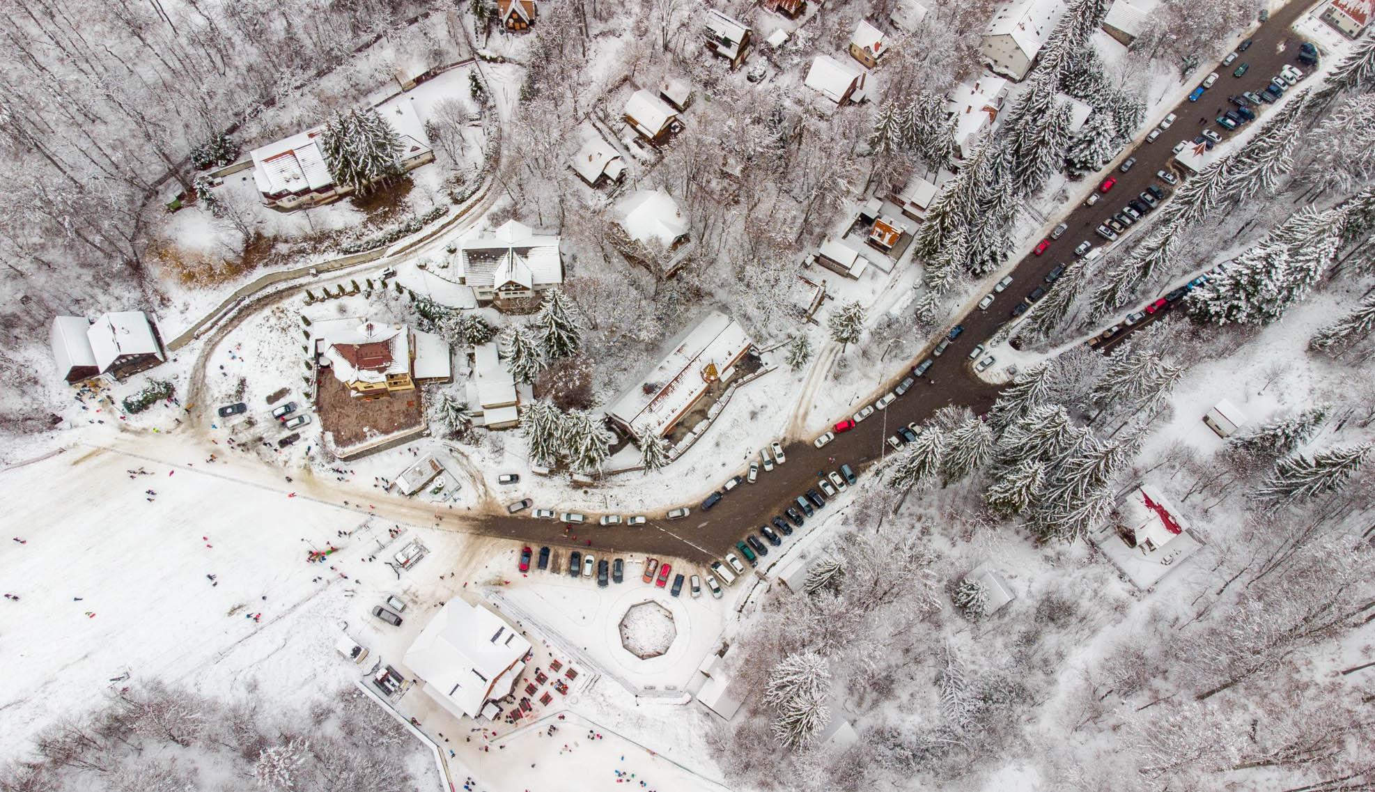 Erdei iskolába fektet a város