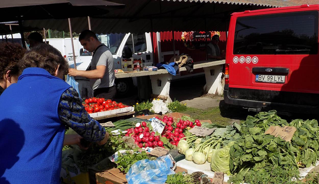 Jóváhagyta a kormány a zöldségtermesztőknek szánt de minimis támogatást