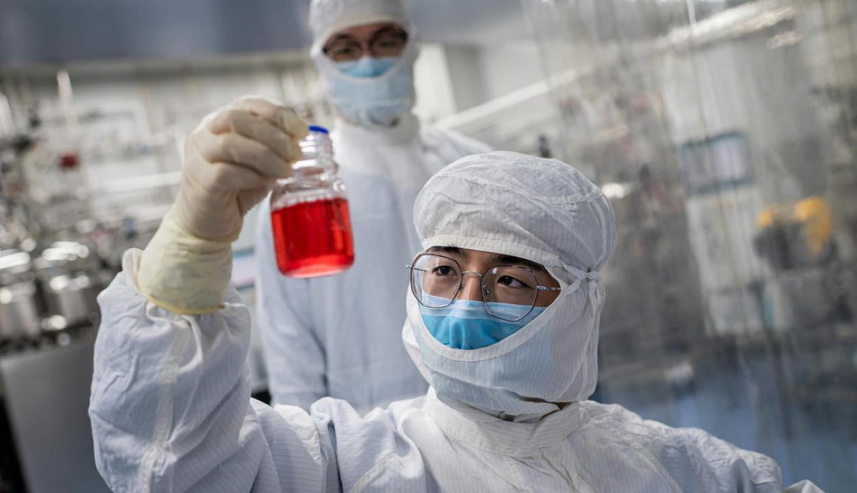 Koronavíruson átesetteket fertőznek meg újra koronavírussal egy oxfordi kísérletben