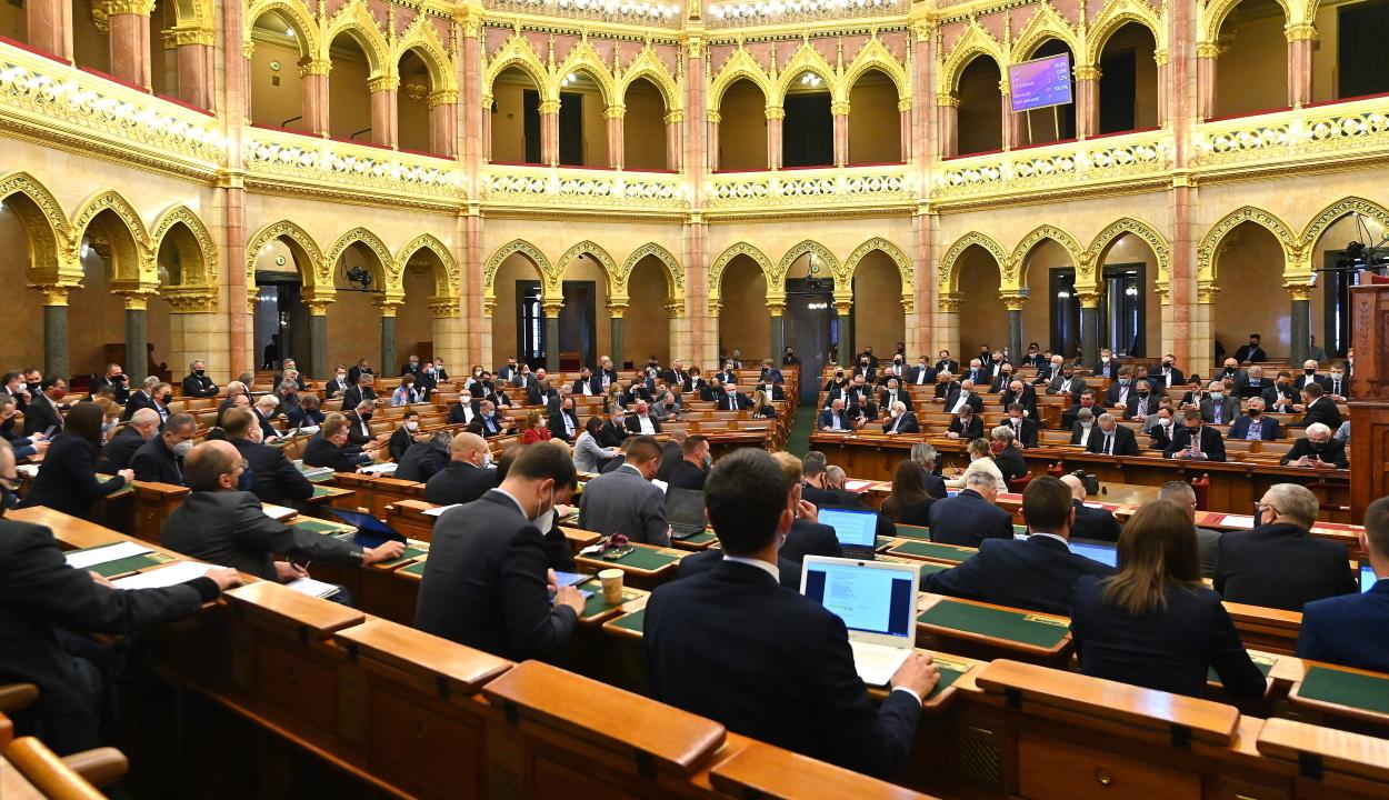 Egyetlen ellenszavazattal állt ki Minority SafePack mellett a magyar Országgyűlés