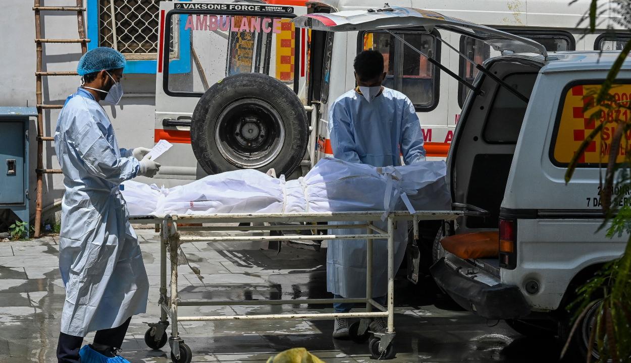 A WHO szerint a hivatalosnál két-háromszor több halottja lehet a járványnak