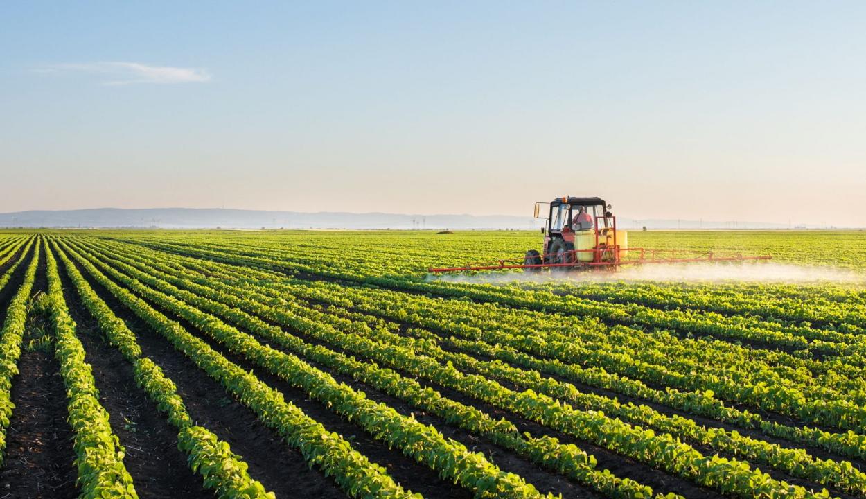 Közel 10 millió hektár mezőgazdasági területre igényeltek uniós támogatást a gazdák