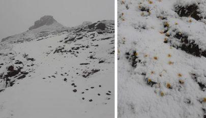 Hiába van június közepe, hó lett a romániai hegyekben