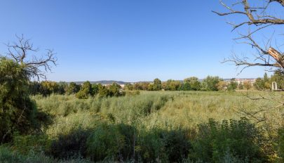 Jövő héten kezdődnek a régészeti ásatások az állomási tónál