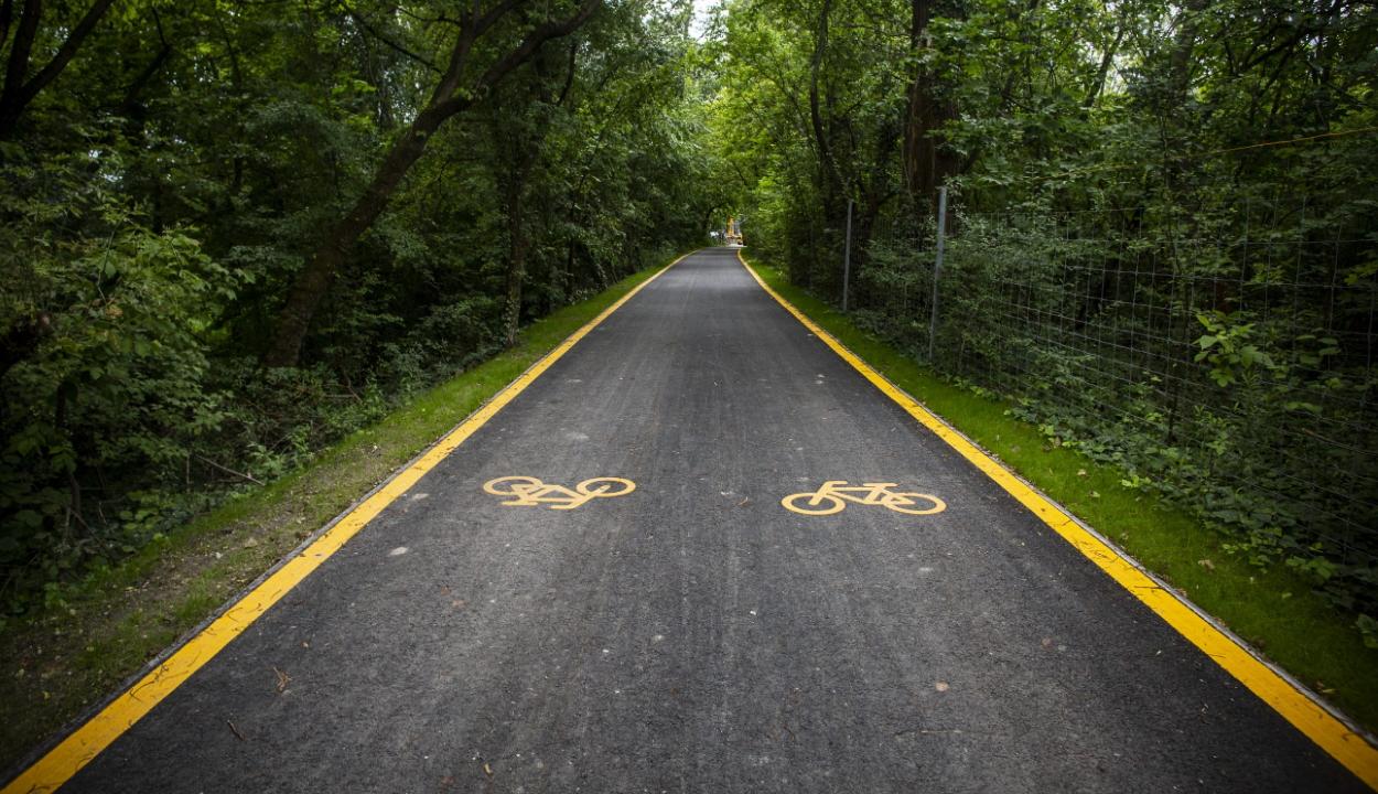 Kerékpárút-hálózatok kiépítését lehetővé tevő törvénytervezetet fogadott el a szenátus