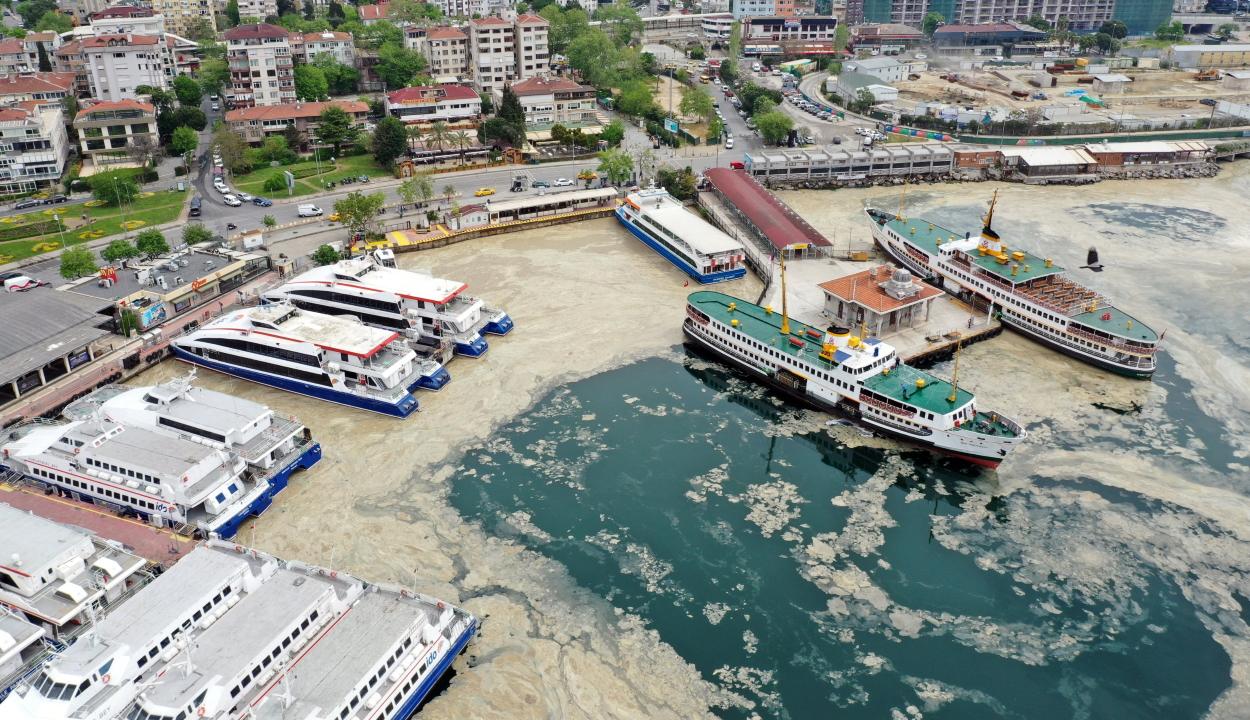Rejtélyes ragacsos nyálka lepte el a tengert Isztambulnál