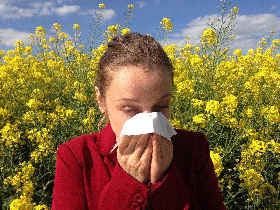 Mit kell tudni az allergiavizsgálatról?
