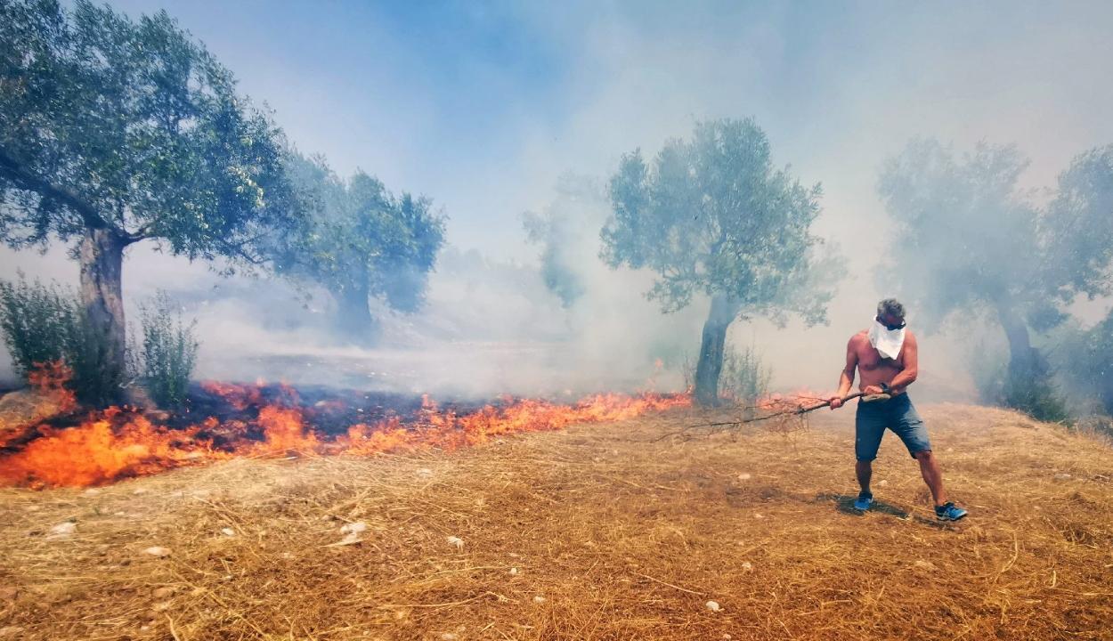 Az EU több, az erdőtűzzel küzdő országnak nyújt segítséget