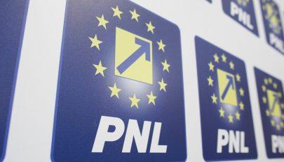 PNL: Cioloș tárgyaljon a PSD-vel és az AUR-ral a kormánytöbbség kialakításáról