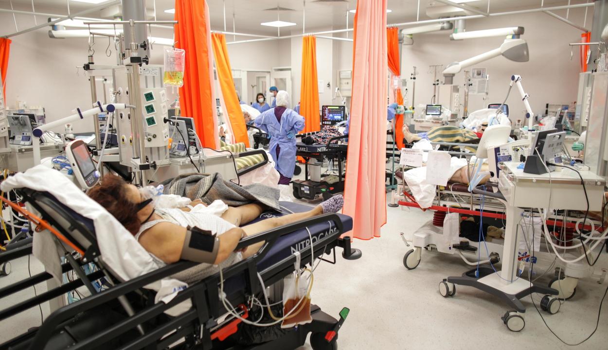 Háborús állapotok vannak a romániai kórházakban