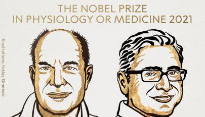 Nem Karikó Katalin kapja az orvosi Nobel-díjat